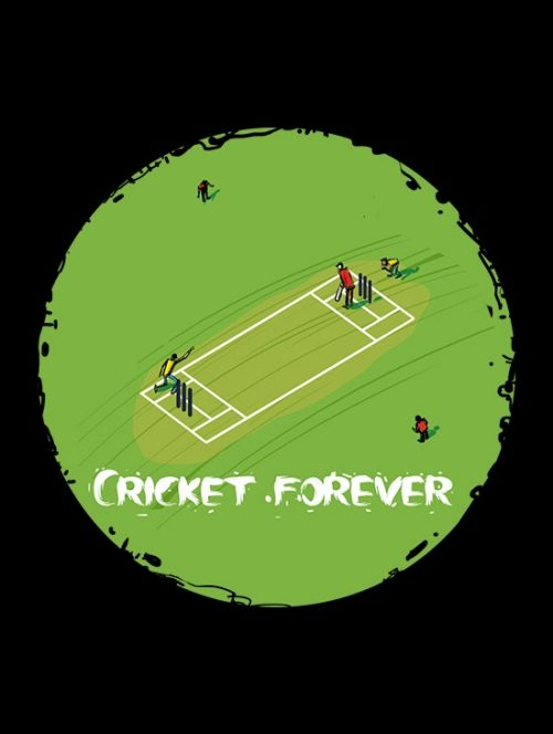 Cricket Gaming Design
